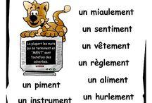 Vive le français - masculin ou féminin / FLE mots masculins et mots féminins