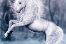 Unicorns / by Renee Spaeth Costlow