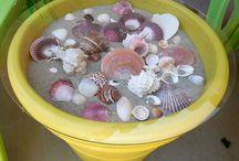 Beachy~Seashells