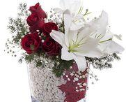 Sarıyer çiçek siparişi, çiçek vitrini ile çok kolay.! / 29 Tl den başlayan fiyatlar ile sarıyer çiçek siparişi verebilirsiniz. Sadece sarıyer çiçek siparişi değil tüm Türkiye'ye çiçek siparişi verebilir,sevdiklerinizi mutlu edebilirsiniz. http://www.cicekvitrini.com/cicekler/sariyer-cicek-siparisi