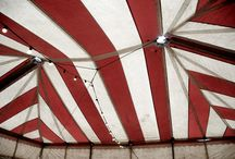 lit: the night circus