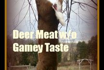 deer meat receipts and how to