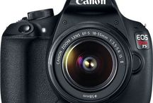 Canon Love / by Beach Camera