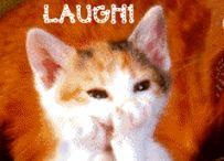 Gargalhando / Frases, imagens e legendas de gargalhadas.