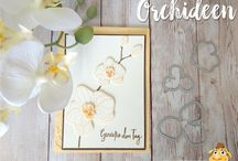 Stampin' Up Orchideen