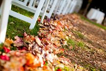 fall weddings / by Oh Lovely Day®