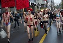 Carré rouge  / Grève étudiante contre la hausse des frais de scolarité au Québec   2012