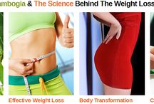 Weight Loss Supplements / Here you will find the best weight loss supplements on the market today!