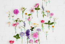 Flower magic & such / by Catina jane Gray