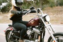 Harley DNA