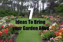 7 Ideas To Bring your Garden Alive