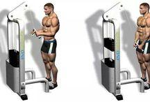Proper Workout Form / Workouts