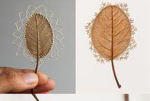 madera hojas
