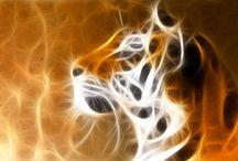 fractal arte