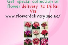 Flower Delivery to Dubai