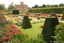 Gardens to visit / Here's some beautiful gardens to visit in Surrey, Hampshire and West Sussex.