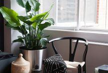 Wishbone Chair / Silla de Diseñador