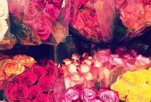 Gotta smell the roses