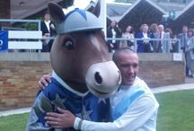 SPORTS MASCOTS: Racecourses / Sports Mascots manufactured by Rainbow Productions for Racecourses.