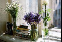 Delight in Flowers
