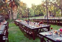 The Venue! / Ideas for wedding and reception venues. You don't have to book the banquet hall anymore!