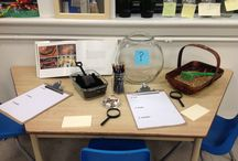 Kinder inquiry & provocations / by Michelle Youngblood