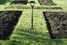 Homestead/Outdoor/Gardening / by Balancing Beauty and Bedlam