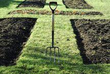 Homestead/Outdoor/Gardening / by Jen (Balancing Beauty and Bedlam blog