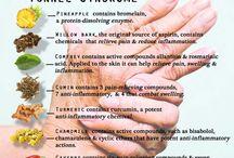 Herbs/plants as medicine