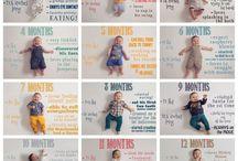 Fotos De Bebê Mensais