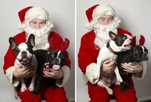 A Very Frenchie Christmas