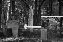 Ghosts & Creepy Things / by debra ward