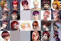 Color Zoom 2014