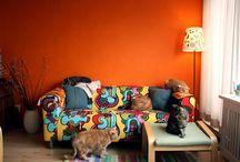 Orange / Orange rooms!