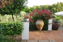 spain garden