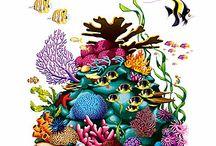 korallrev