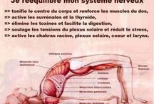 sport gainage important