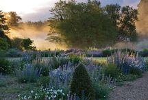 ogrody, kwiaty, rośliny