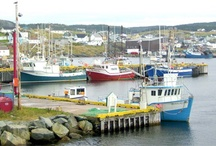 All things Newfoundland
