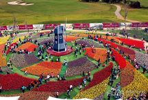 flower park design