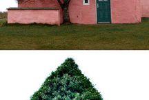 le arbre