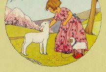 sheep / schapen plaatjes