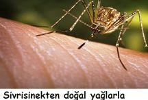 Sivrisineklere karşı