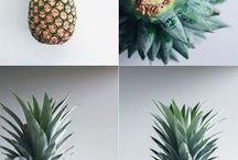Ananasblomster diy