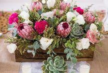 Protea na ślub! / Ten piękny egzotyczny kwiat warto wykorzystać na ślubie!
