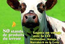 Evenements en Normandie