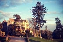 Bovey Castle Instagram / by BoveyCastle