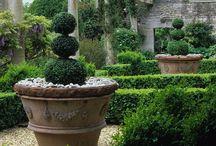 jardines y paisajes... / by Maria Marves