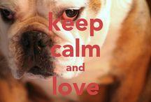 I <3 My Bulldog / by Kristin Ott