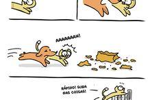 Dog & Cat❤